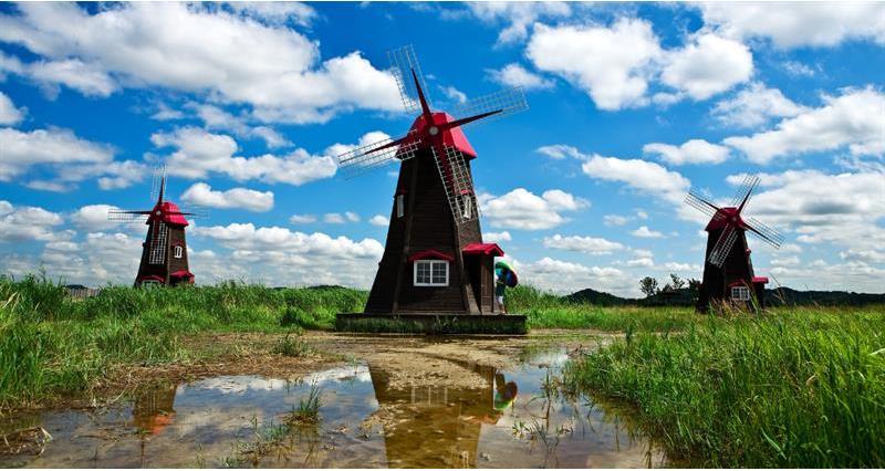 Holland Windmill _65277