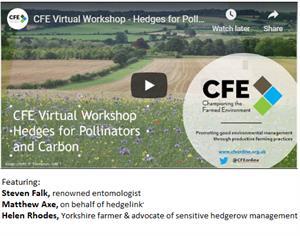 CFE hedges webinar screenshot_74371