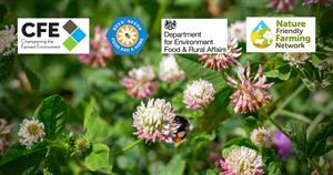 CFE Bees' needs awards banner_74568
