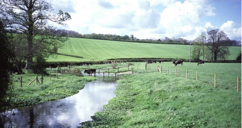 Watercourse fencing