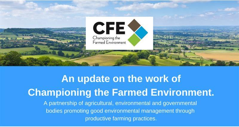 CFE Newsletter - July 2020