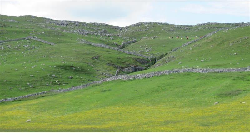 Malham upland landscape_66334