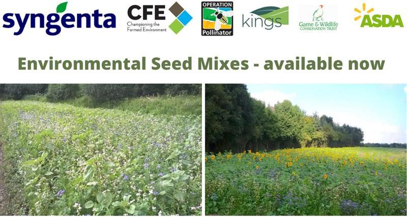CFE Environmental Seed Offers 2020