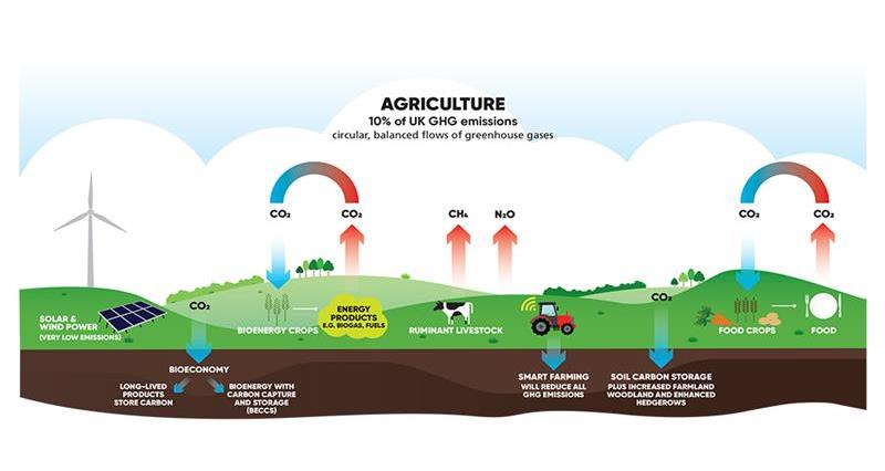 Climate Change and Agriculture - the Basics