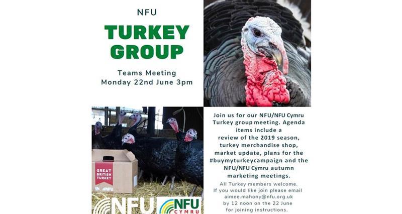 Turkey meeting June 2020_73697