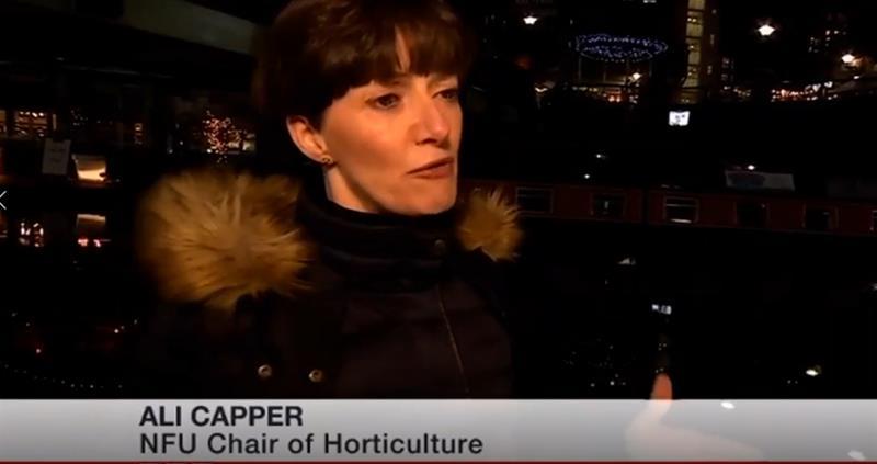 Ali Capper on BBC Midlands Today_61290