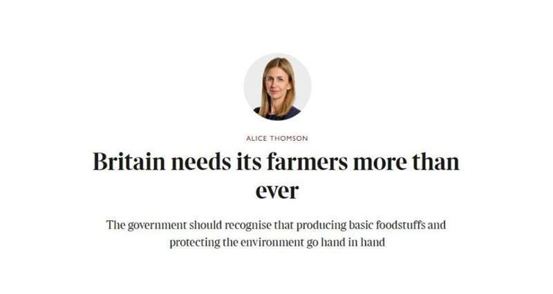 The Times Alice Thomson column_72666