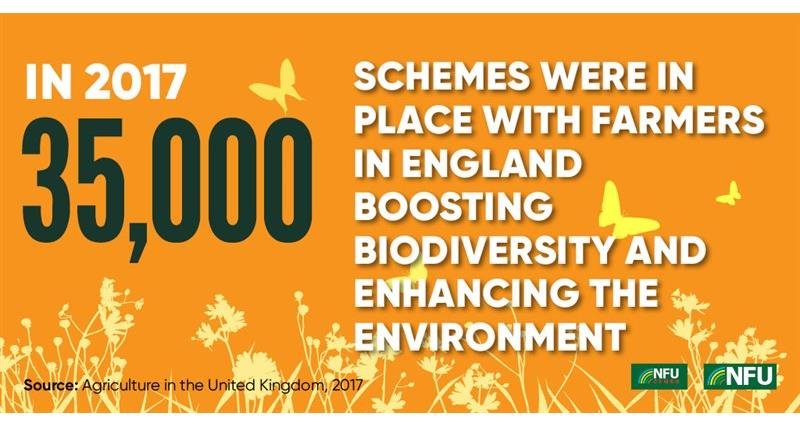 NFU Twitter infographic biodiversity schemes