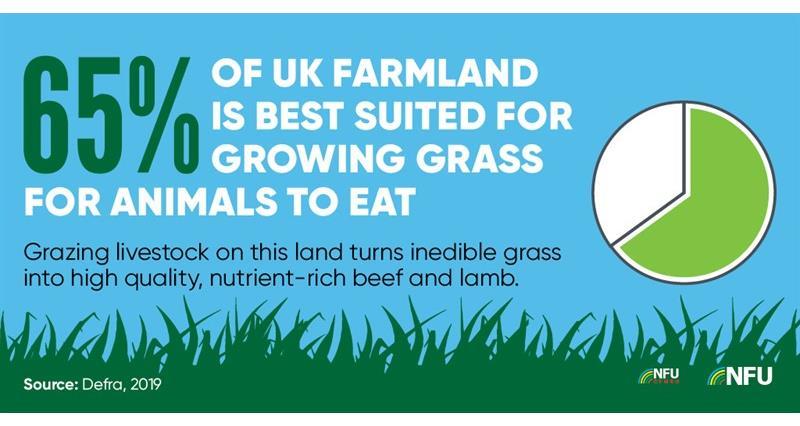NFU Twitter infographic growing grass