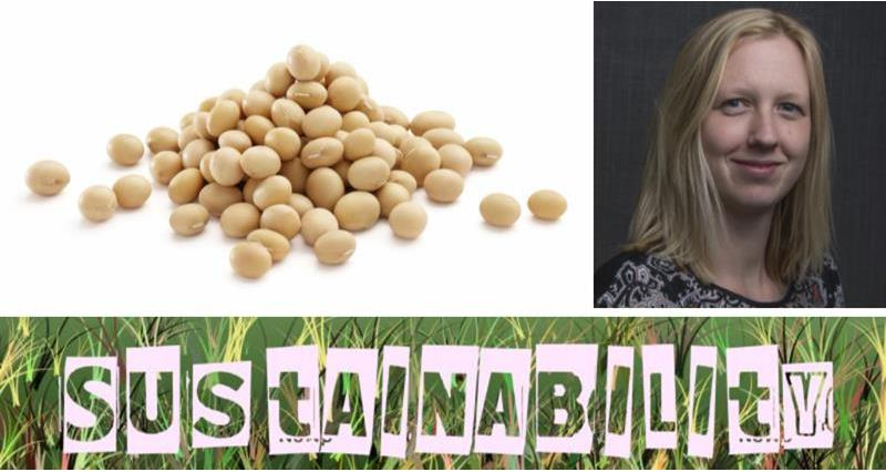 Soya Sustainability_67806