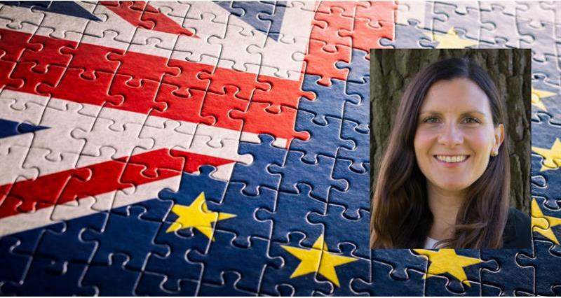 Lucia Zitti EU-UK negotiations article_73927