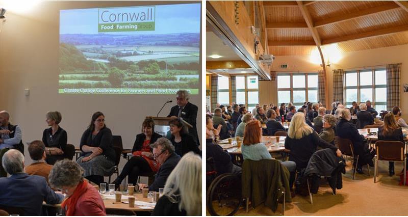 Talking about net zero: Cornwall and Bucks_72768