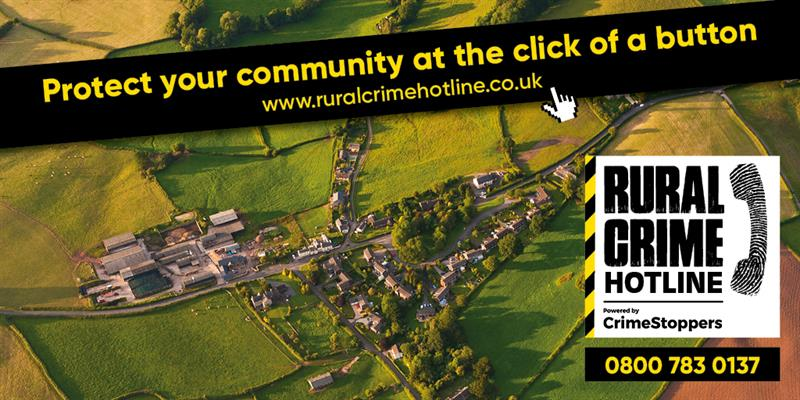 Protect your community at the click of a button Twitter_70070