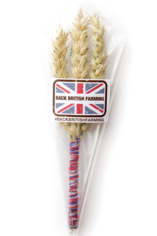 wheat-pin badge