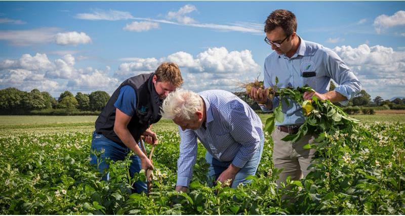 Back British Farming Day 2020_74488