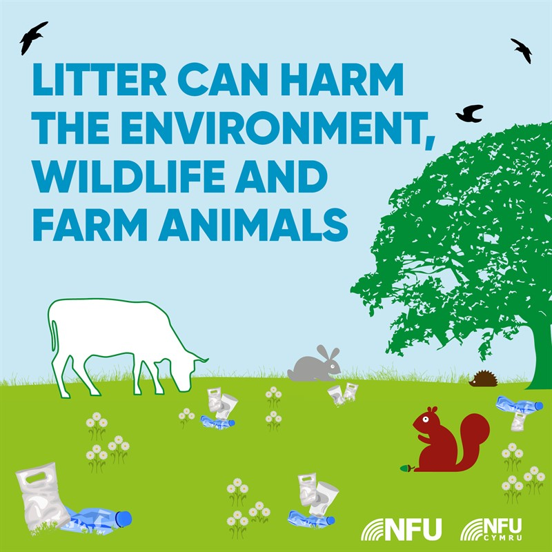Countryside Code litter can harm NFU Facebook and Instagram infographic