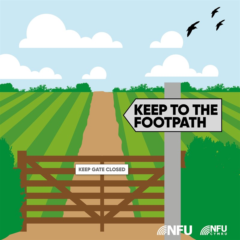 Countryside Code keep to the footpath NFU Facebook Instagram infographic