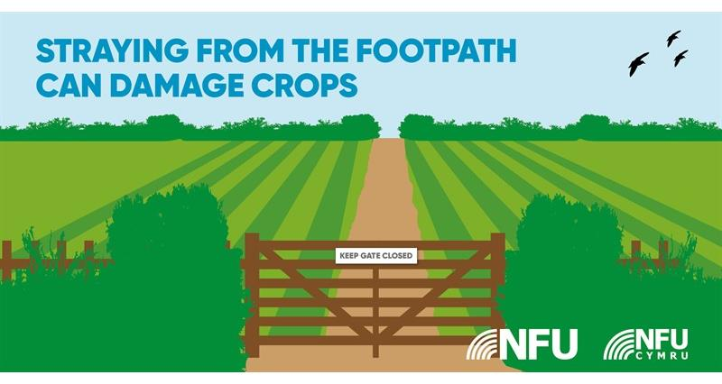 Countryside Code straying from footpath can damage crops NFU Twitter infographic