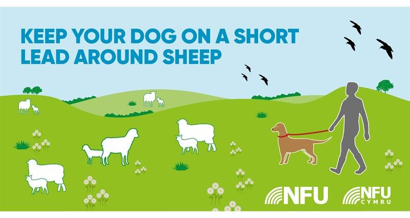 Countryside Code short lead NFU Twitter infographic