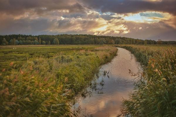 Anglian water_77843