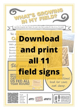 What's growing in my field – Download all 11 field signs