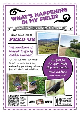 What's growing in my field – feed us