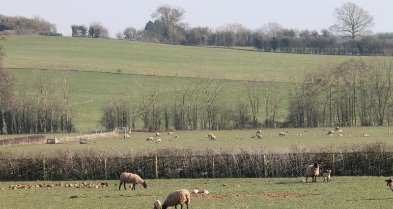 Highway Farm, Herefordshire_27911