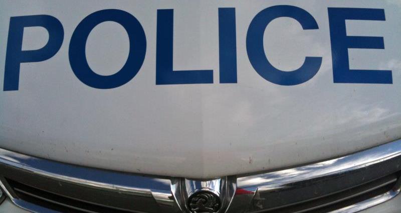 police car livery _26682
