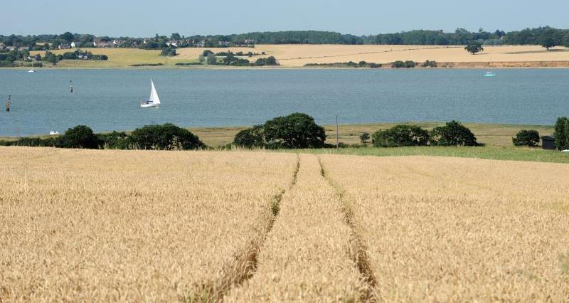 Less is More: Managing Water Quality and Soil Health on Farm - Essex event: 27th Nov