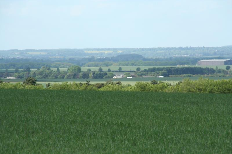 Fields in Cambridgeshire_11961