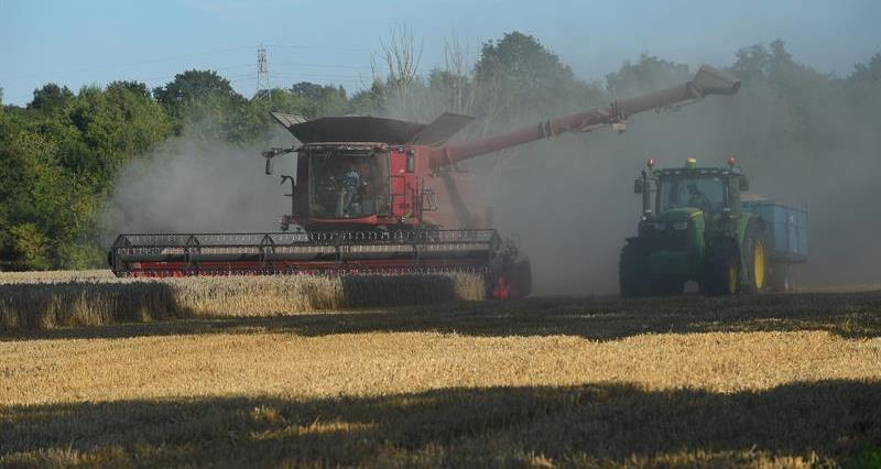 Harvesting at East Bergholt in Suffolk_74099