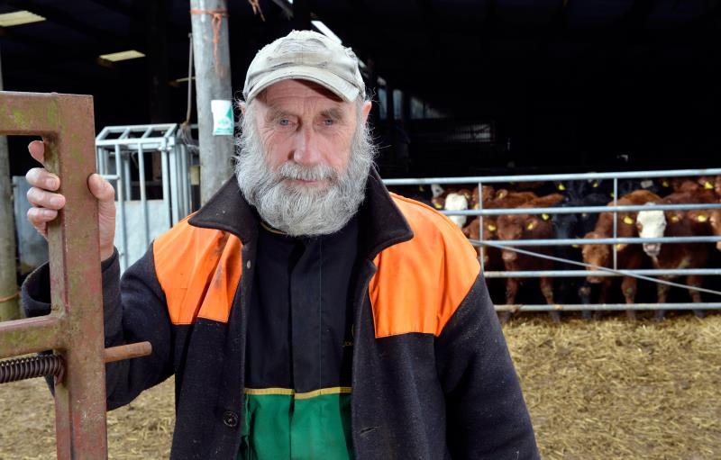 TB testing results with Shropshire beef farmer, Mervin Mullard_14965