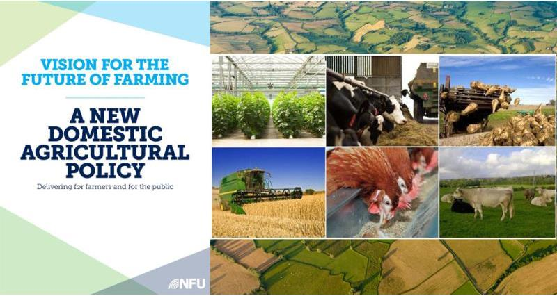 a new domestic agricultural policy - header picture, brexit, article 50, eu_42867