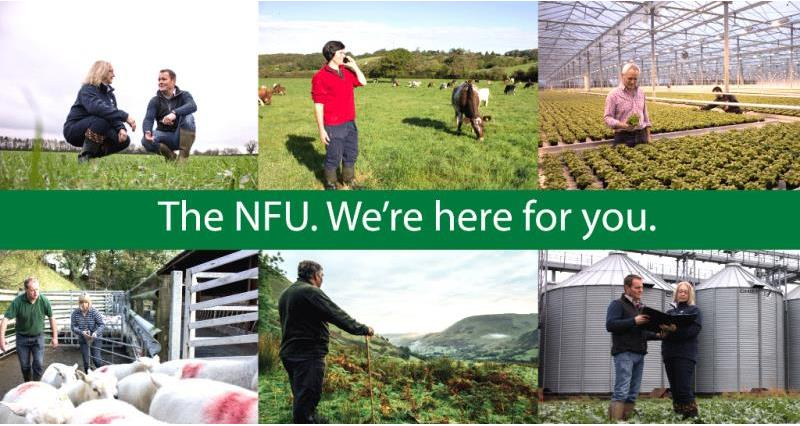 tv ad, membership homepage banner-1024x542, the NFU we're here for you_36643