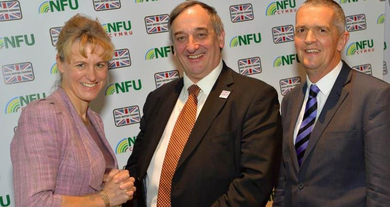 Meurig Raymond re-elected President