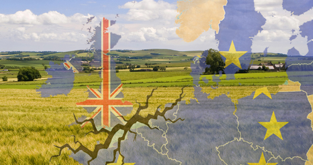 eu, referendum, brexit, trade, fields and map of europe, web crop