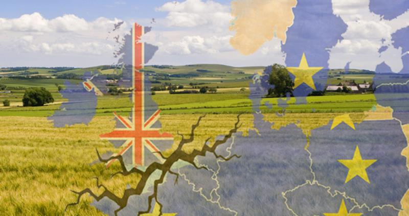 eu, referendum, brexit, trade, fields and map of europe, web crop_42869