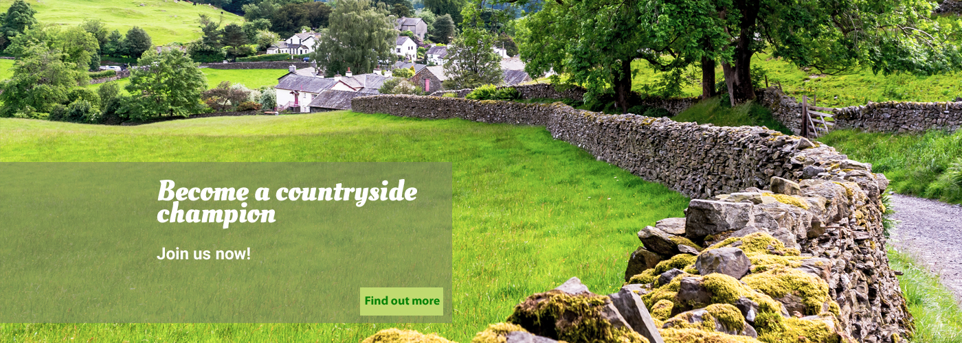 Join Countryside now - village and dry stone wall