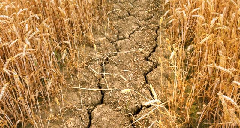 How prepared are we for the next drought?