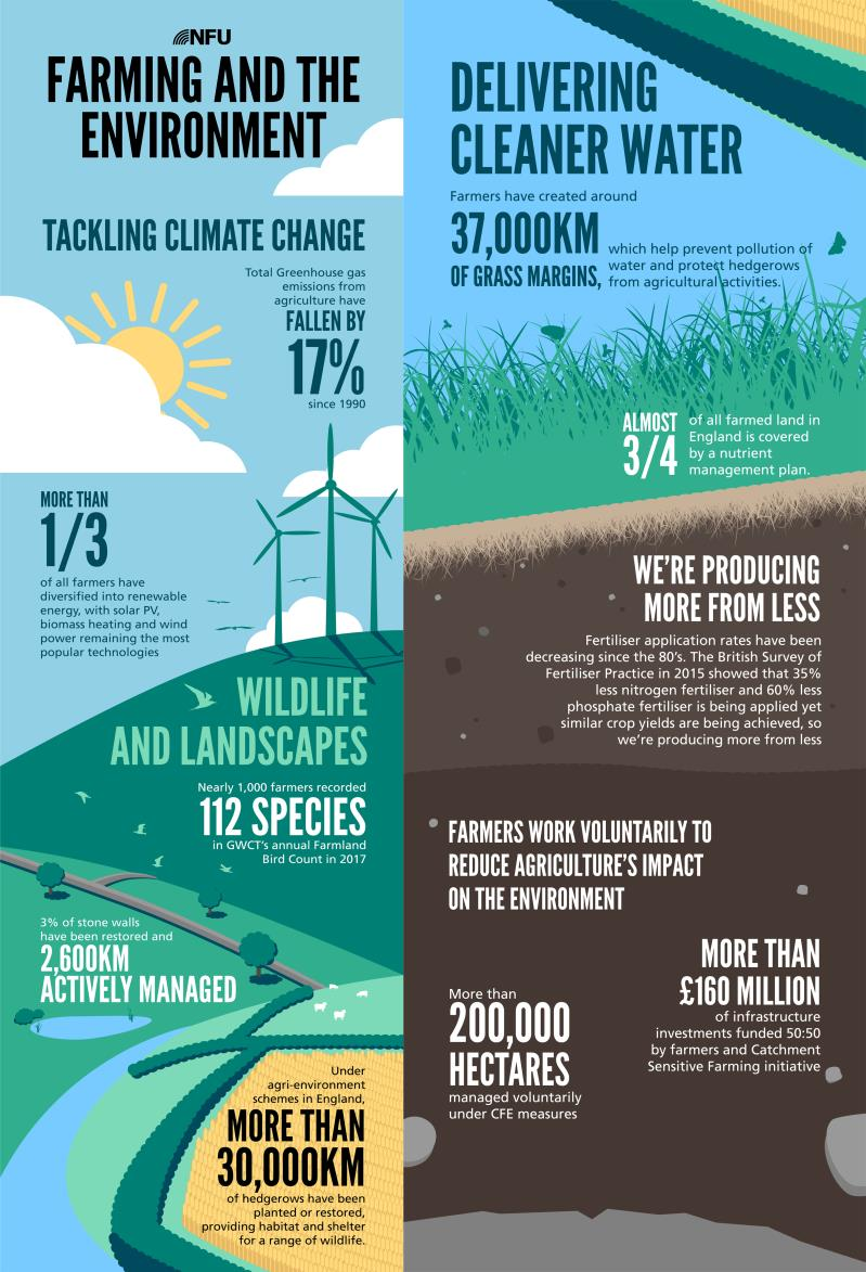 world environment day infographic square, june 2017