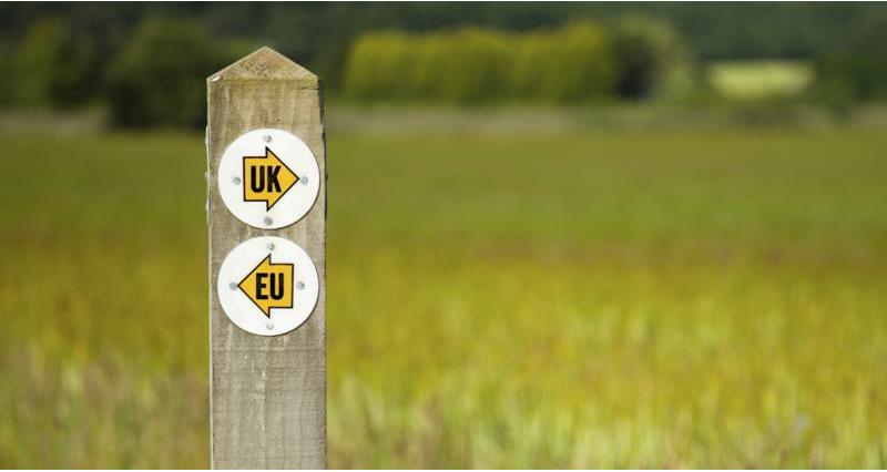 NFU summary: Withdrawal Agreement