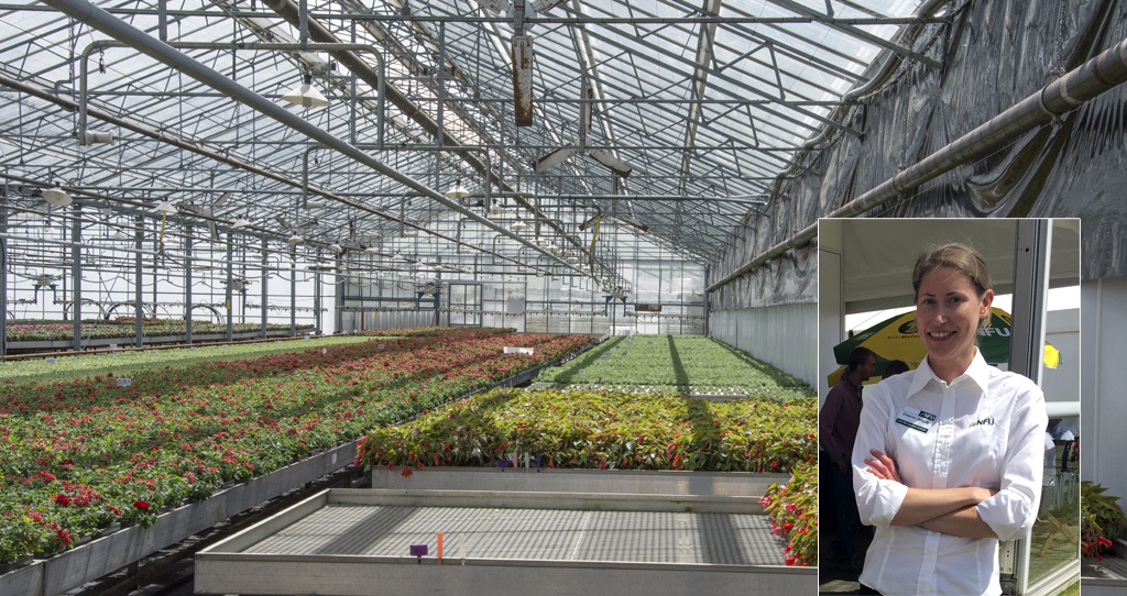 Blog Behind A Great Result For Nursery Growers