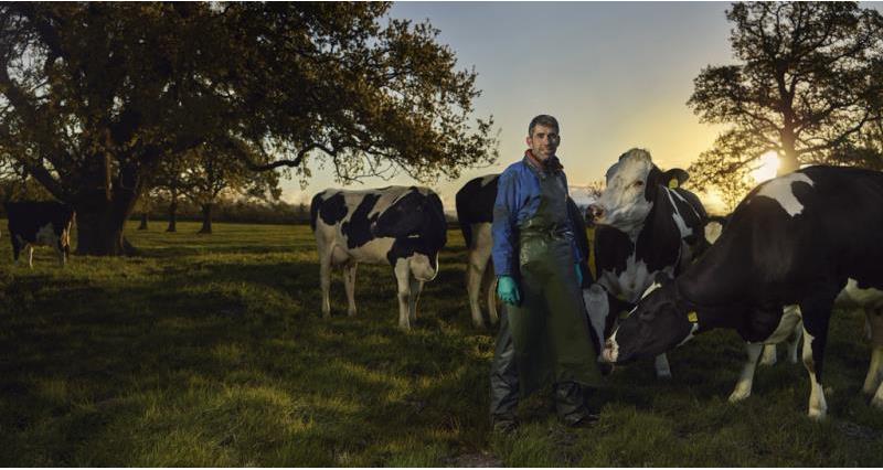 paul tompkins on farm, dairy, web crop, feed, forage, cows, grass_57919