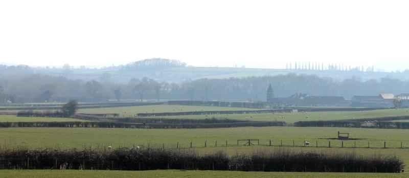 herefordshire farm_31510