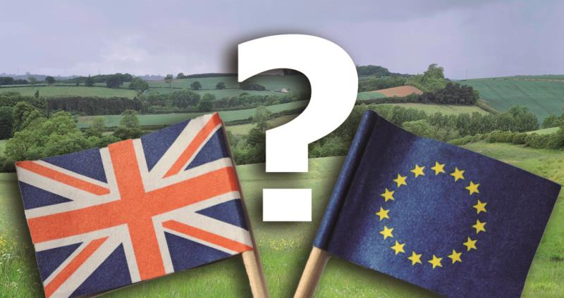 eu faqs banner, flags, countryside and question mark_36614
