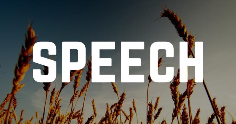 speech nfu17 press ident_41172