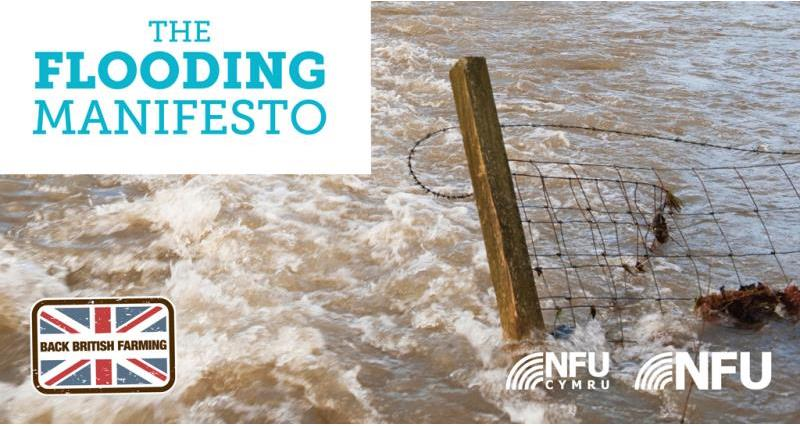 flooding manifesto web teaser image, january 2017_40584