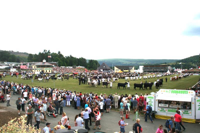 Main ring parade at the Royal Welsh Show_23771