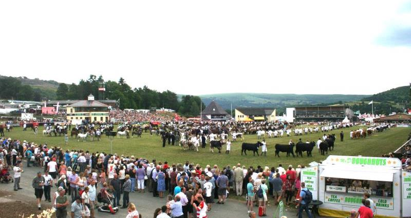 Main ring parade at the Royal Welsh Show_23771