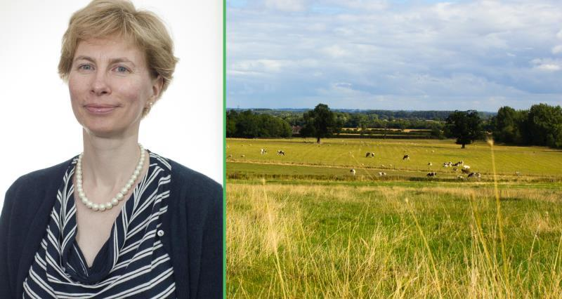 diane mitchell and generic field background, nfu environment, nfu staff_35086